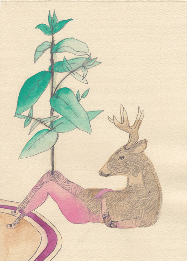 "Kelly Rae Burns' ""Plants and Animals"" drawing, Eucalyptus"