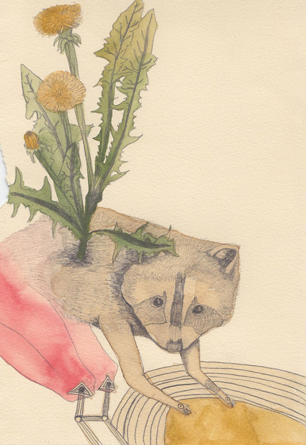 "Kelly Rae Burns' ""Plants and Animals"" drawing, Dandelion"