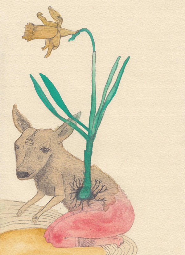 "Kelly Rae Burns' ""Plants and Animals"" drawing, Daffodil"
