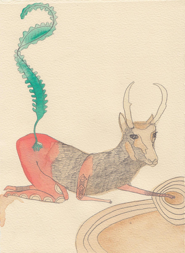 "Kelly Rae Burns' ""Plants and Animals"" drawing, Kelp"