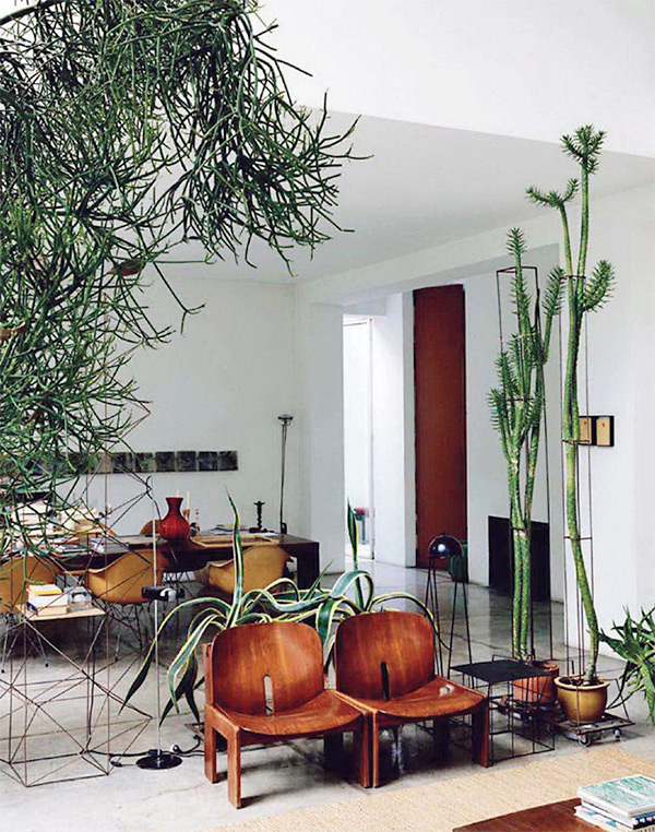Maurizio zucchi 39 s succulent inspired interior design for Interior designs with plants