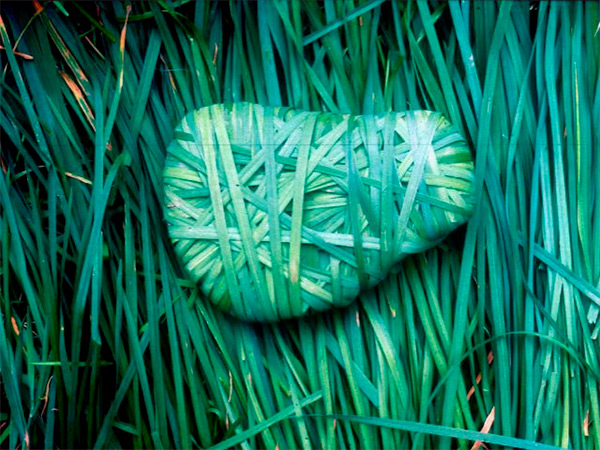 Natural land art by Andy Goldsworthy