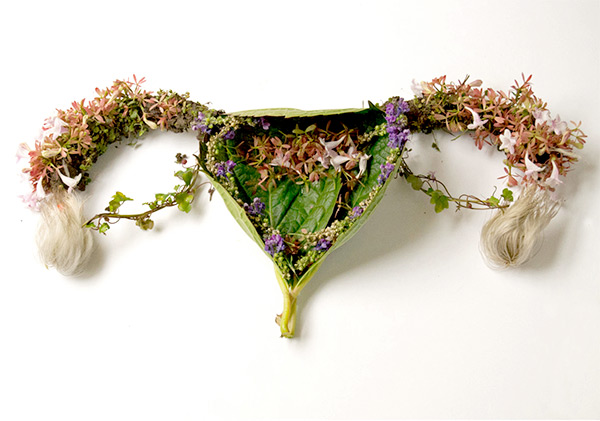 Organs created from plants by Camila Carlow