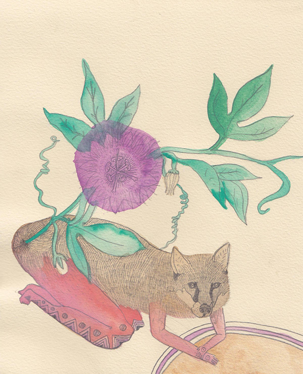 """Kelly Rae Burns' """"Plants and Animals"""" drawing, Passionflower"""
