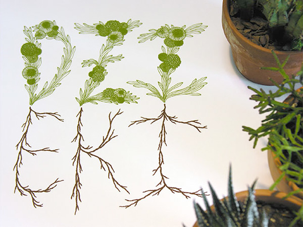 Sasha Prood's botanical typography illustration
