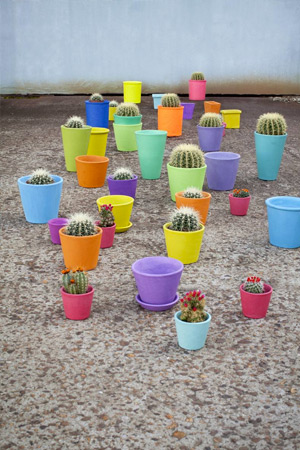 Bright cactus plant pots from Serax Maison