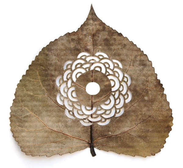 Cutout leaf art by Lorenzo Duran Silva