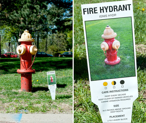 Fire hydrant urban plant tag by Charmichael Collective