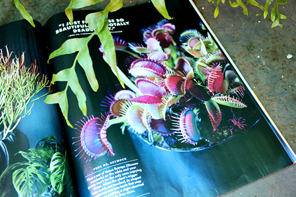 Weird plant photos in Sunset Magazine