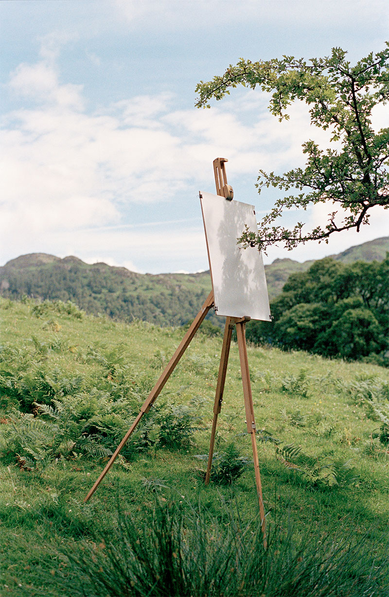 Drawings by trees facilitated by artist Tim Knowles
